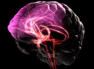 Нарушение мозгового и сердечного кровообращения из-за алкоголя