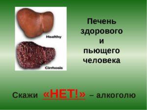 Как выглядит печень алкоголика и здорового человека?