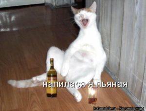 Болит голова когда пью вино